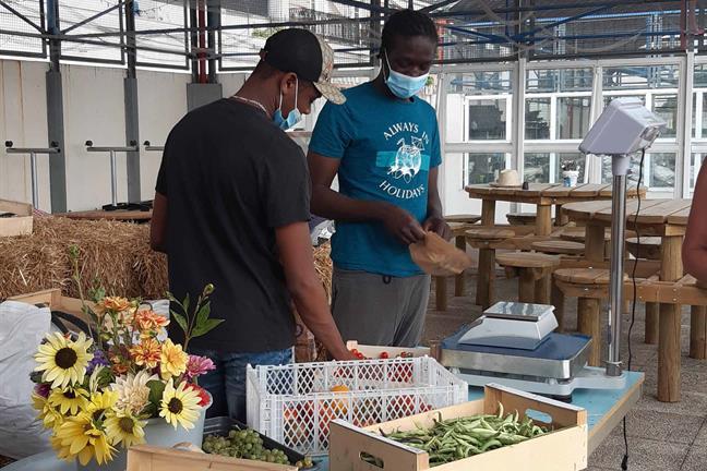 Projet éducatif vente de fruits et légumes